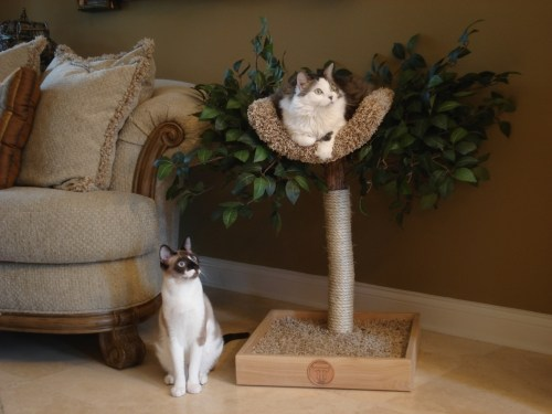 Nesting Tree with Amelia and Feather.jpg